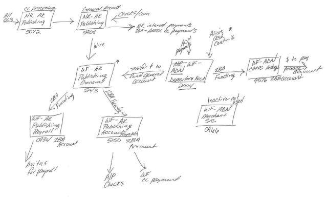 ADN flow chart