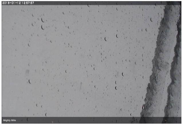 alyeska rain