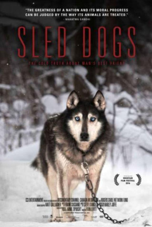 sled dogs I